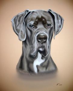 Ein Tiergemälde Pastellgemälde - Hundeportrait, Hundegemälde