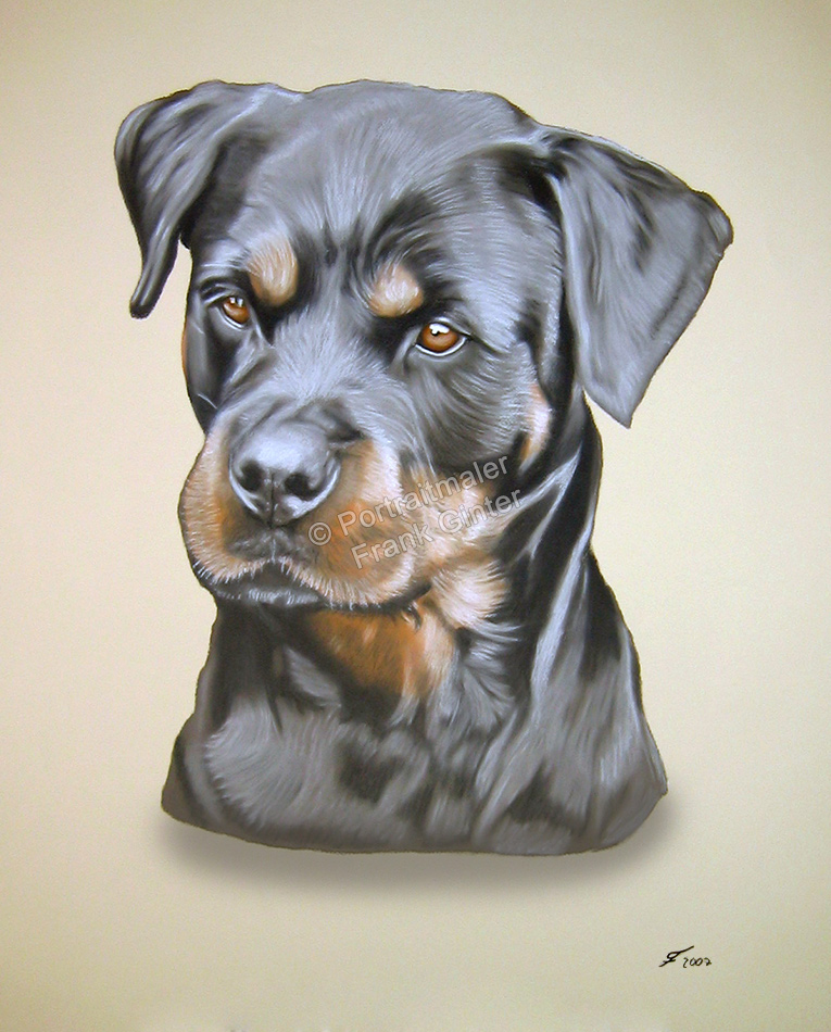 Gemalte Bilder, Tierportraits, Tiermalerei Hundeportrait, Tierportraits malen lassen, Hundegemälde, Tierportraits vom Foto, Rottweiler