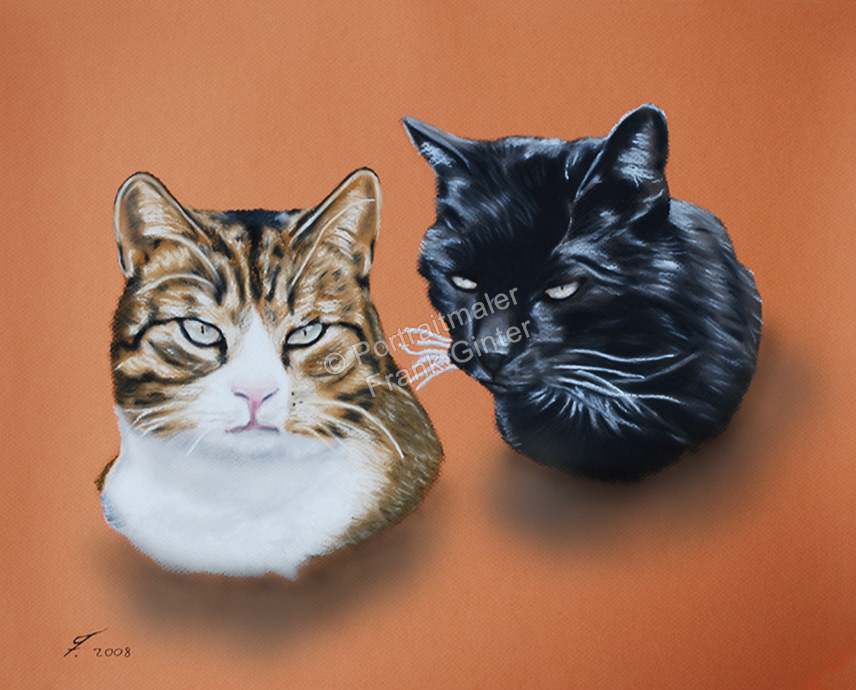 Ein Tiergemälde Pastellgemälde - Katzenportrait, Katzengemälde
