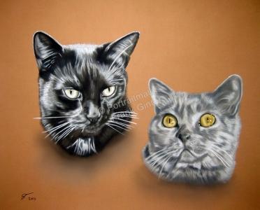 Gemalte Bilder, Tierportraits, Tiermalerei Katzenportrait, Tierportraits malen lassen, Katzengemälde, Tierportraits vom Foto