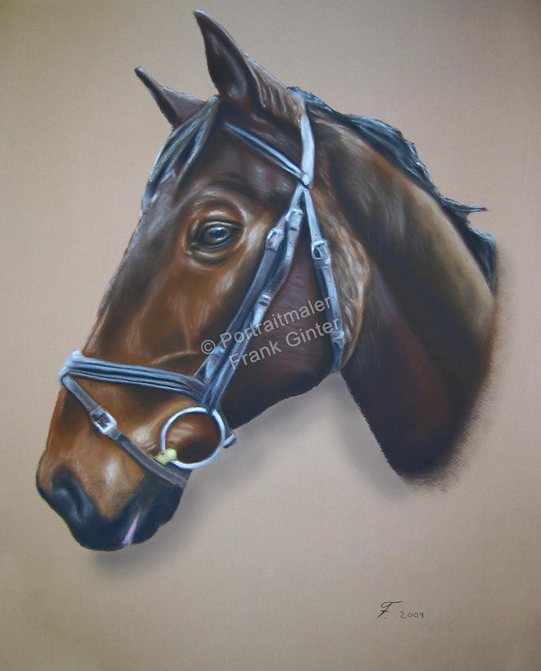 Ein Tier Pastellgemälde - Pferdegemälde in Pastell Pferdeportrait