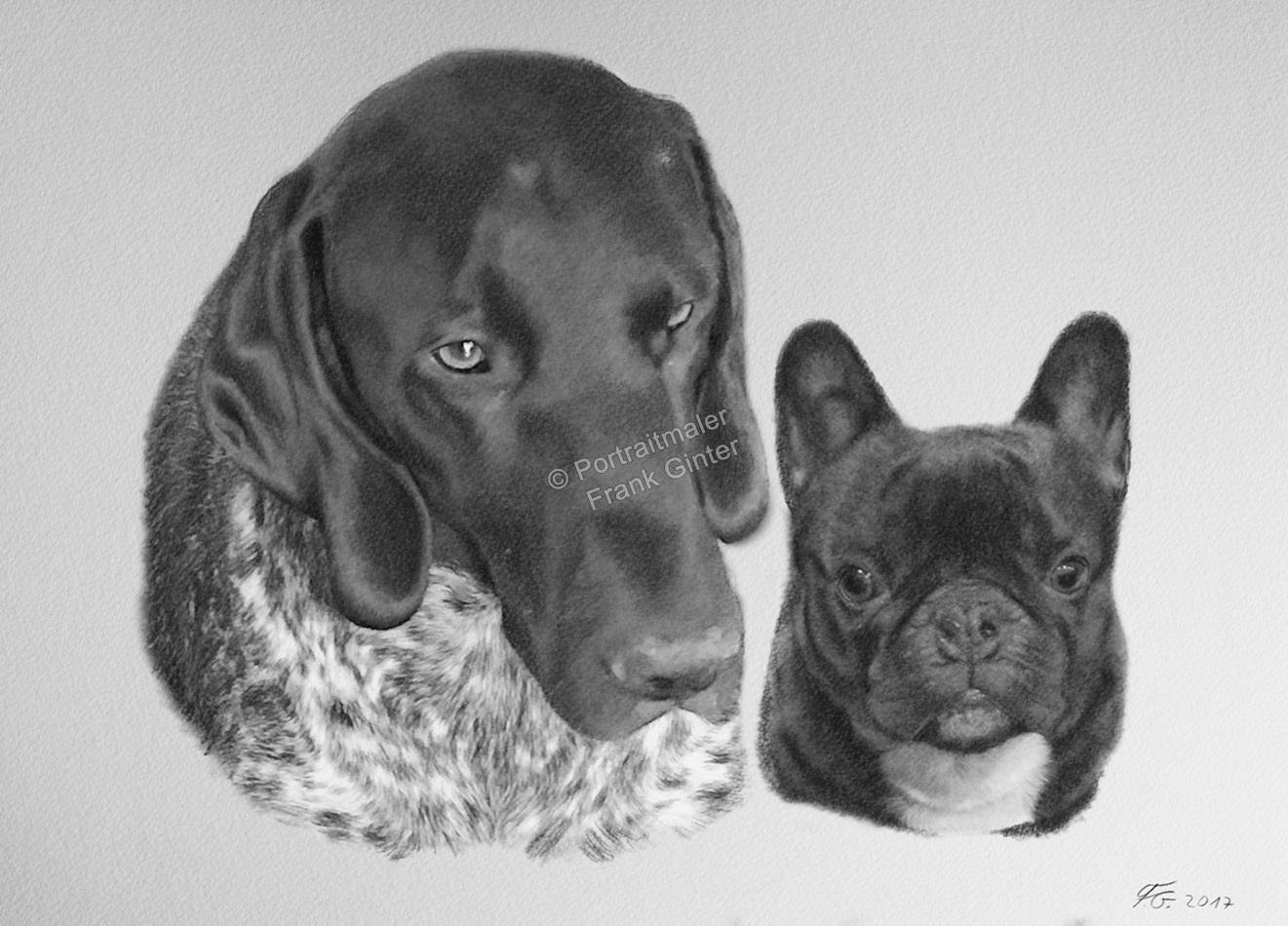Bleistiftzeichnung von Hunden, Tierzeichnungen, Bleistiftzeichnungen, Tierportraits, Hundeportraits